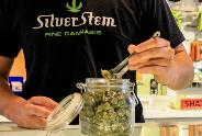 Big Jar with Weed