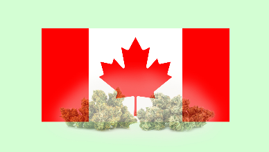 Canada Leaps -  Nationwide Legalization of Cannabis