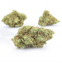 Blue Cheese | Indica-Hybrid