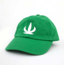 Cactus Dad Hat | Green O/S