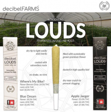 Decibel Loud, Lemon Kush Infused Pre-Roll, 1.38g