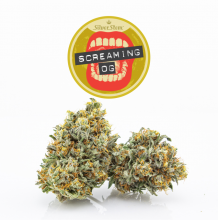 Screaming OG | Indica