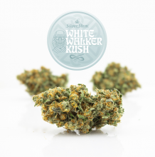 White Walker Kush | Hybrid